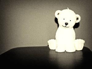 Stalker-Bear