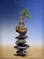 balance act by nicolsche