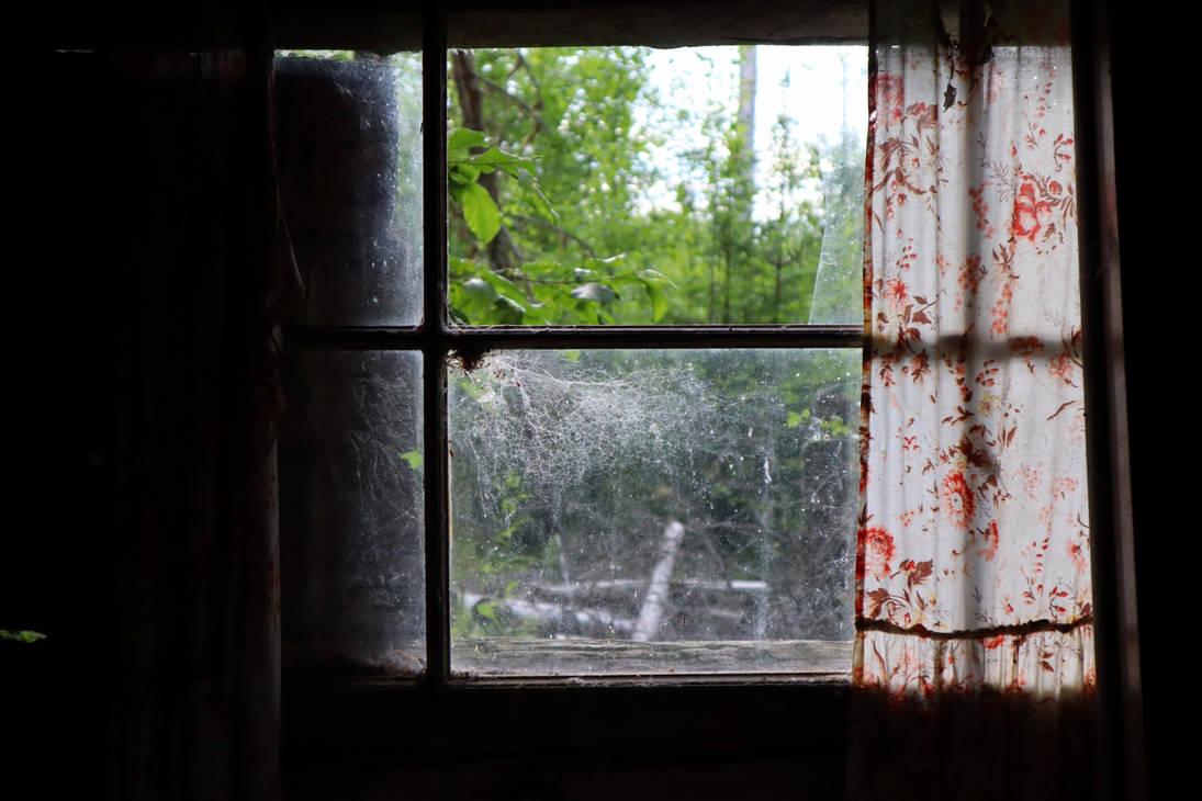 abandoned cabins window