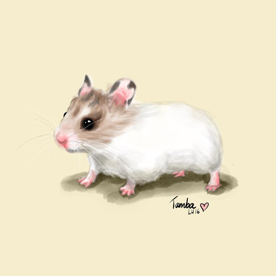 A Small Friend by Wiggymole