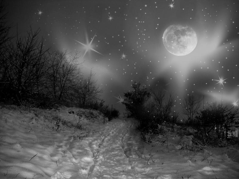 .wondernight. by candymax