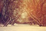 :goodbye winter: