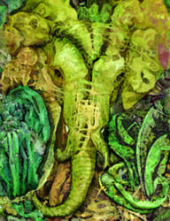 Elephantosity