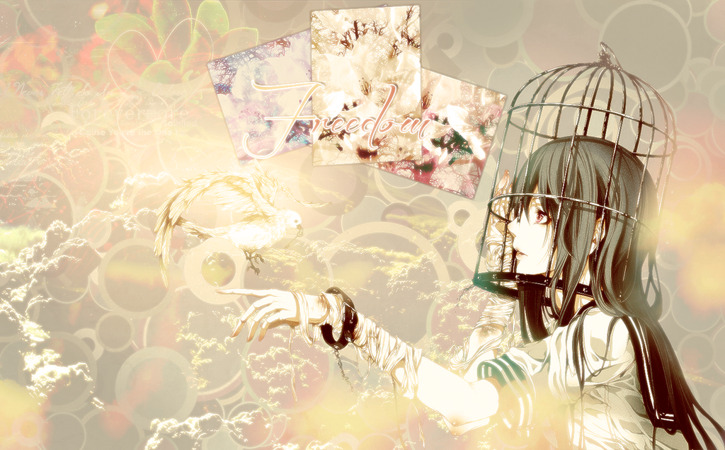 Freedom Wallpaper By Kimel95