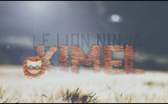 LION NINJA by kimel95