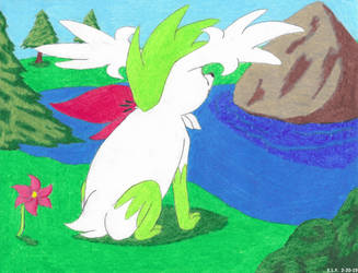 Shaymin's Thoughts by SummerShe-Wolf