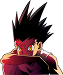 Hunter X Hunter - Gon - Updated head