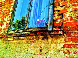 Dead Window by AlisaTamna