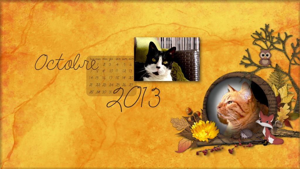 wallpaper calendrier octobre 2013 chat