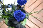 Blue rose :stock: