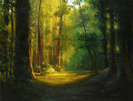 Michael Mao - In The Forest