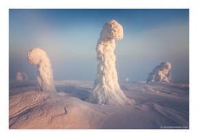 Sentinels of the Arctic