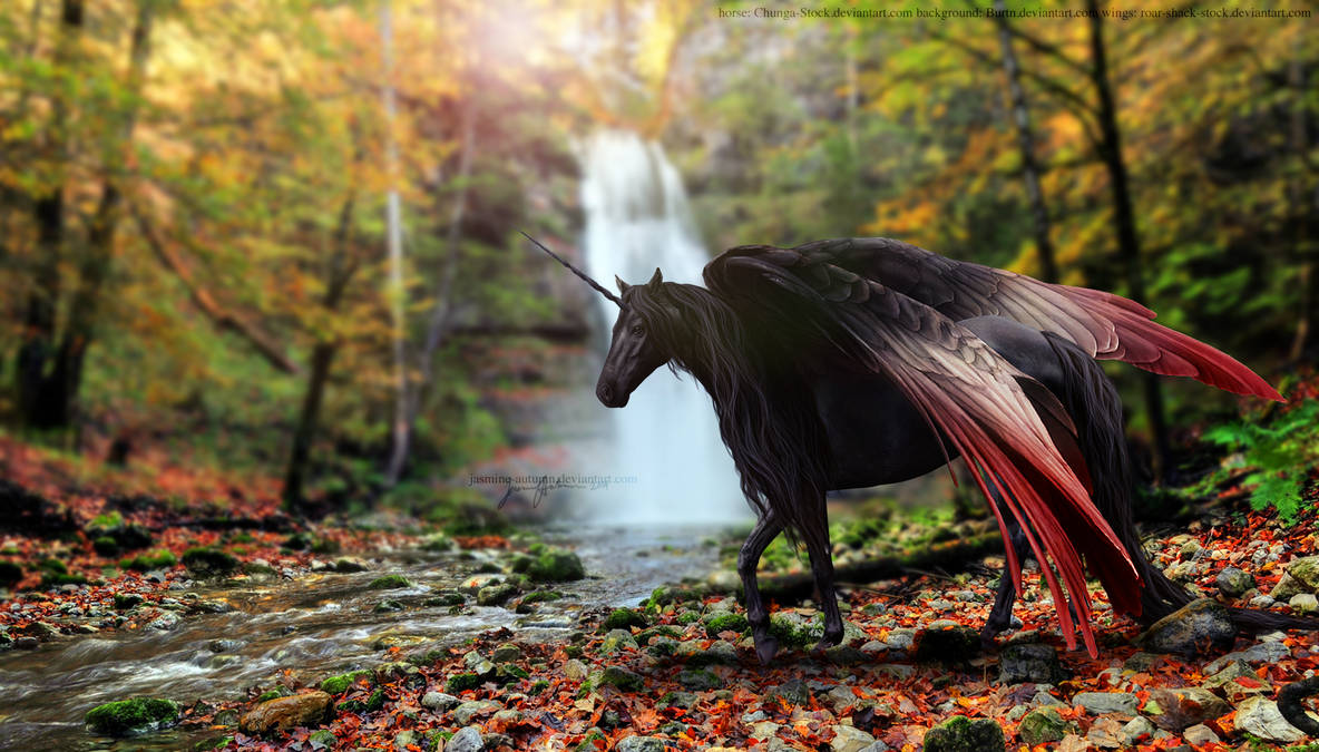 On the Heels of War and Wonder by jasmine-autumn