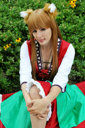 Spice + Wolf: Wolf and Red Dress