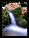 little waterfall III