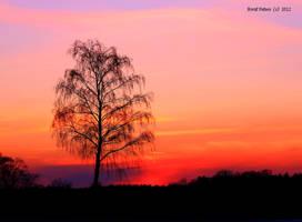 Sunset 6 by bluesgrass