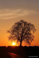 Sunset 39 by bluesgrass