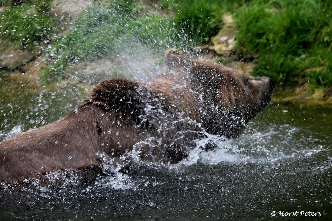 Splish Splash... by bluesgrass
