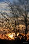 Sunsetimpression 4