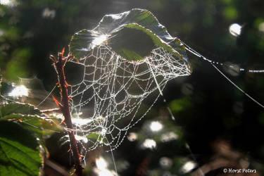 Autumn Impression by bluesgrass