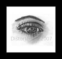 Eye See You Too . . .