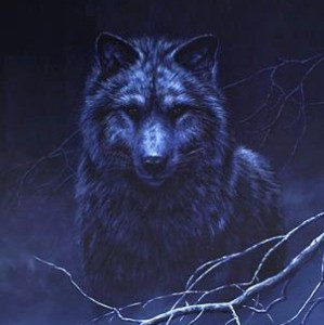 Shadow Wolf Princesss Profile Picture