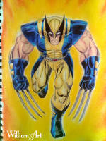 Wolverine - ( Traditional drawing )  by William-Art