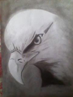 2012 drawing - Eagle by nielopena