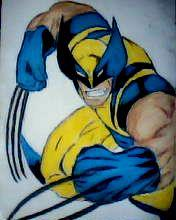 2012 drawing - wolverine by nielopena