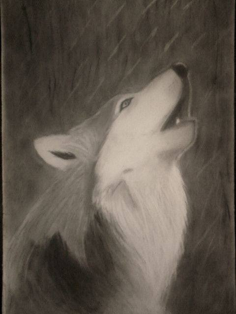 2013 drawing - Wolve by nielopena