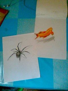 2013 drawing - 3D spider vs 3D fish by nielopena