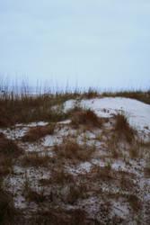 Aeirmid - Foggy Beach 6