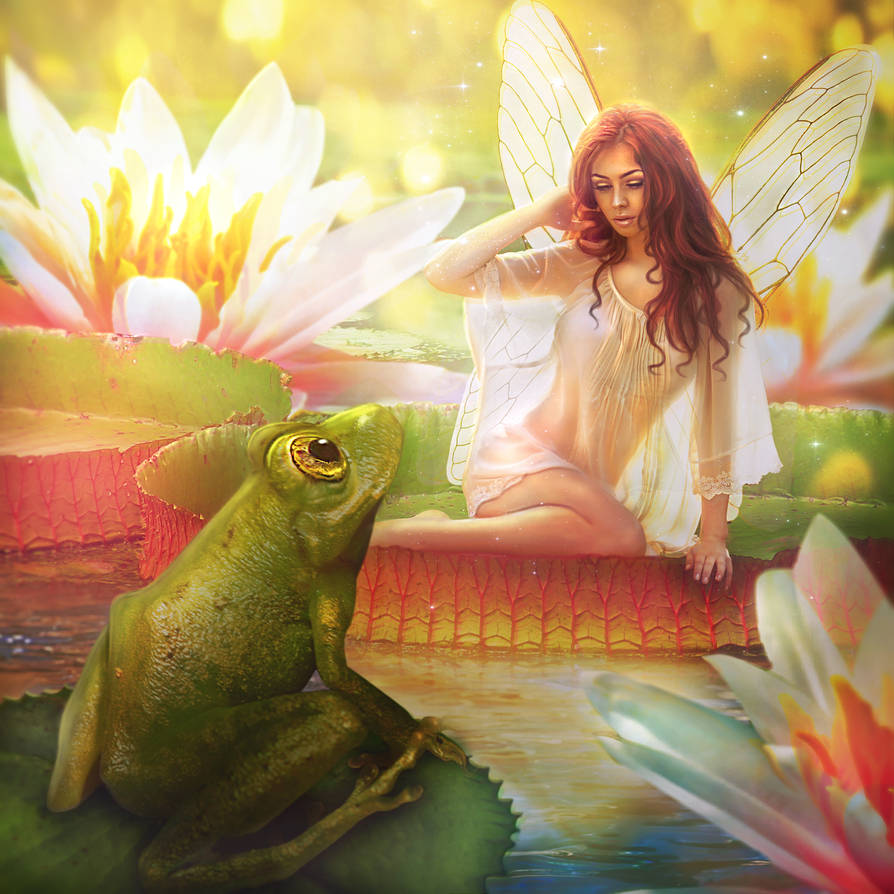 The Fairy and the Frog by Aeirmid
