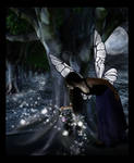 The Fairy Trail