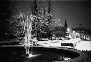 Winter Wonderland (Nikon FE2) by TenthMusePhotography