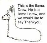 Drew the llama by hoblinlord