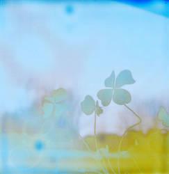 my favorite luck by prismopola