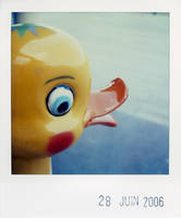 yellow duck by prismopola
