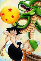 Dragonball Origins by Raijin89