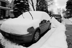 Jetta in the snow