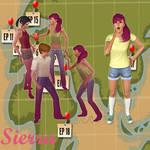 Sierra TDWT SiMS 3