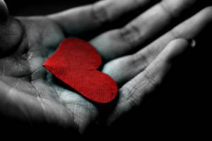 heart in hand by girlmarvel