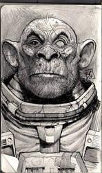 SpaceMonkey