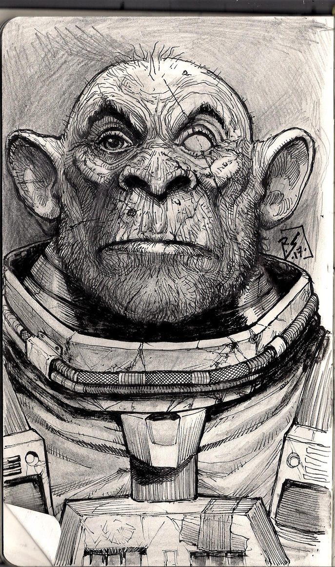 SpaceMonkey by Ruihq