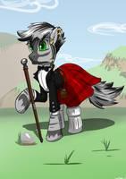 Irish Zebra by Distoorted