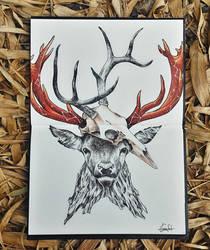 oh my deer by aslah92