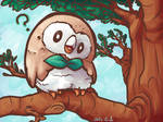 Perched Rowlet