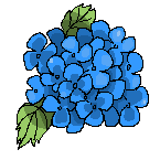 Icon Hortensia by hiromihana