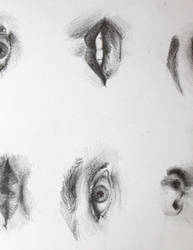 Eye and Mouth Study