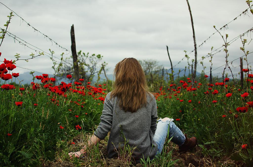 poppyfields. by ilmari-nen